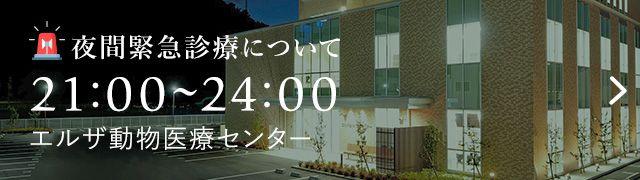 夜間緊急診療について 21:00〜24:00 エルザ動物医療センター