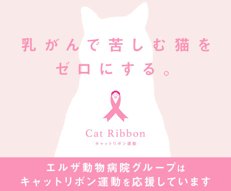 エルザ動物病院グループは、キャットリボン運動を応援しています。